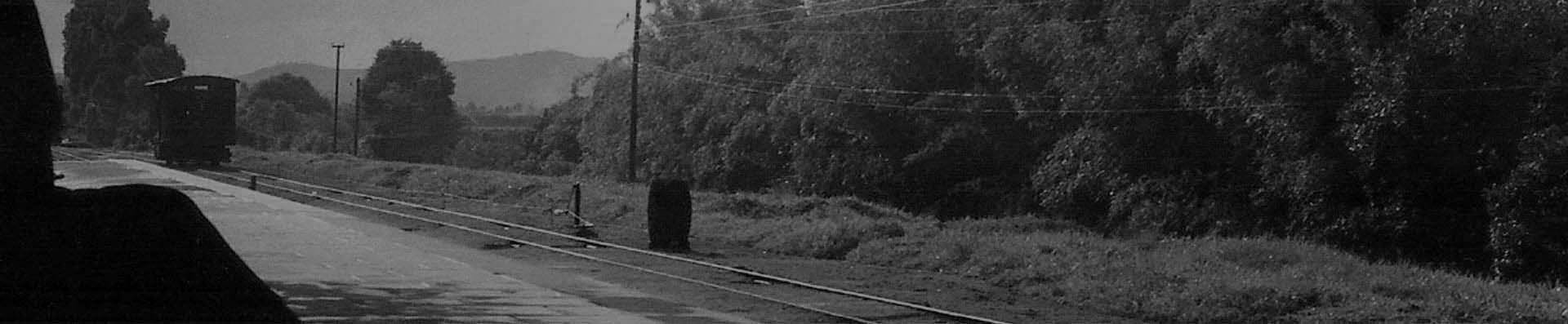 banner_trem